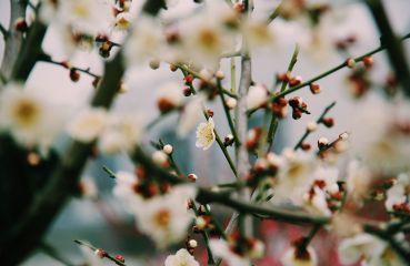Čo sú príčiny rozmazaného videnia a ako sa ho zbaviť